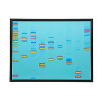DNA art print gift for guys who have everything