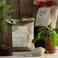 Tree Growing Kit