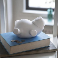 Porkfolio Electronic Piggy Bank