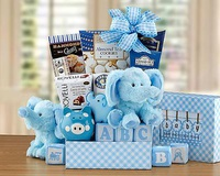 Blue Oh Baby Gift Basket